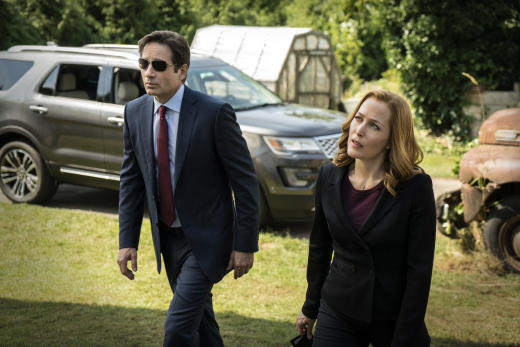 xfiles mulder scully